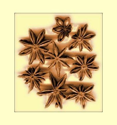 Anis Estrellado Flor Entera (Illicium verum) - 100 gramos