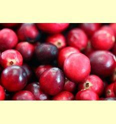 Información de los arándanos rojos