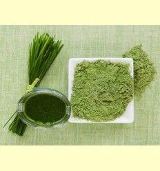 Alga Chlorella - Artículo informativo Plantis
