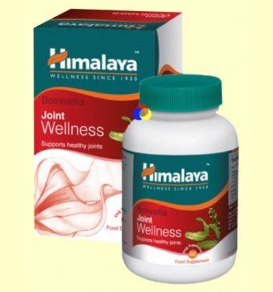 Shallaki - Boswellia Serrata - Herbals - 60 cápsulas