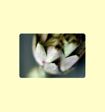 Extracto de hoja de alcachofa para reducir el colesterol - Información facilitada por Lamberts España