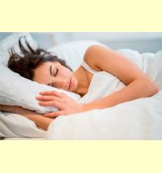 La hormona de la Melatonina - Artículo informativo