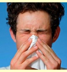 Fitoterapia y yemoterapia en el tratamiento de la rinitis alérgica - Artículo informativo de José Daniel Custodio