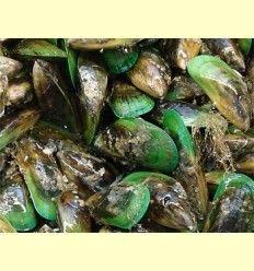 Inflamación y ácidos grasos esenciales: Krill, mejillón de labio verde - Artículo informativo de José Daniel Custodio