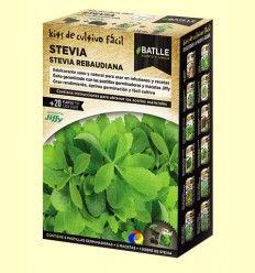 Kits de cultivo fácil STEVIA - Batlle