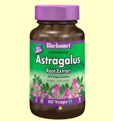 Astragalus Estandarizado - Bluebonnet - 60 cápsulas vegetales
