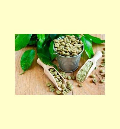 El Café Verde - Artículo informativo de José Daniel Custodio