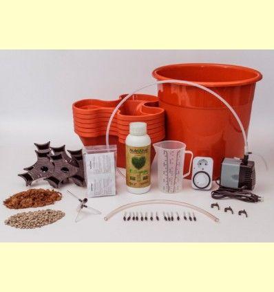 Kit Cultivo Hidropónico Ecogarden - Irisana