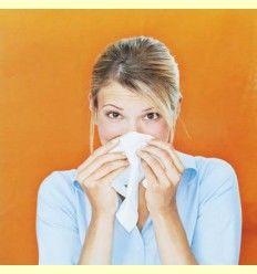 Información sobre: Primavera y Alergias - Artículo Informativo por Rafael Sánchez - Naturópata -