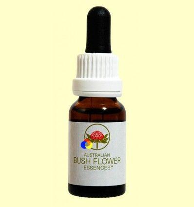 Esencia Floral Dagger Hakea - 15 ml
