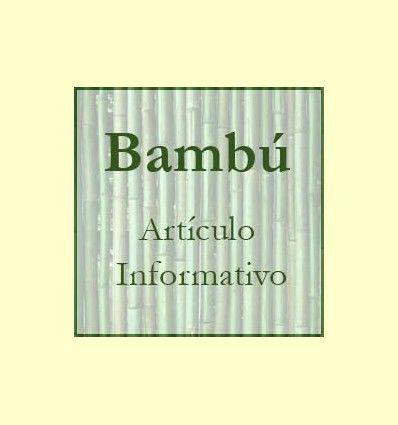 Información del Bamboo o Bambú