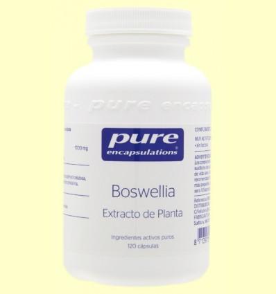 Extracto de Boswellia - Pure Encapsulations - 120 cápsulas