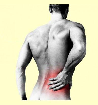 Información - Dolor de Espalda y Estrés por Jordi Gracia - Artículo Informativo