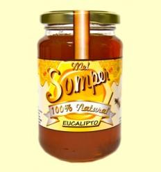 Miel Eucalipto - Somper - 470 gramos