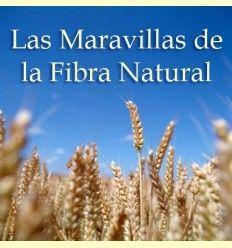 Información sobre las maravillas de la fibra natural - Artículo Informativo por Mikel García, Director Técnico de Solgar España