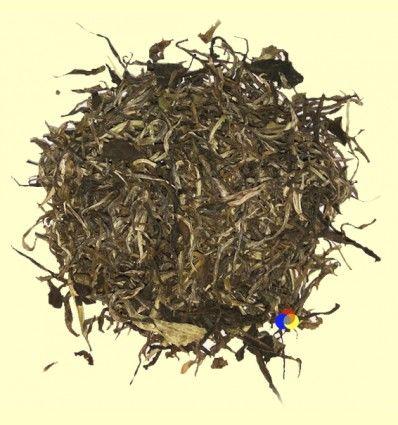 Mao Feng Pine Needle - Té Verde - Casa Pià