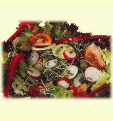 Benéficos germinados, germinados para la salud.