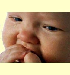Información - La dentición infantil - Artículo Informativo de Rafael Sánchez - Naturópata -