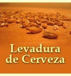 Información de la levadura de la cerveza - Artículo informativo de Mikel García - Director técnico de Solgar España
