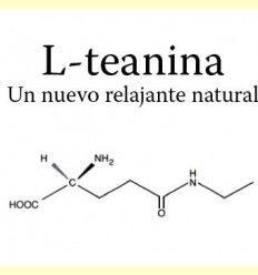 Información de la L-Teanina (L-Theanina), un nuevo relajante natural por Mikel García - Director Técnico de Solgar España -