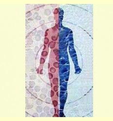 Información sobre el Sistema inmune - Barrera contra las infeciones - Artículo Informativo