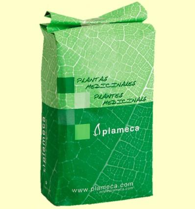 Té Verde Hoja Entera - Plameca - 1 kg