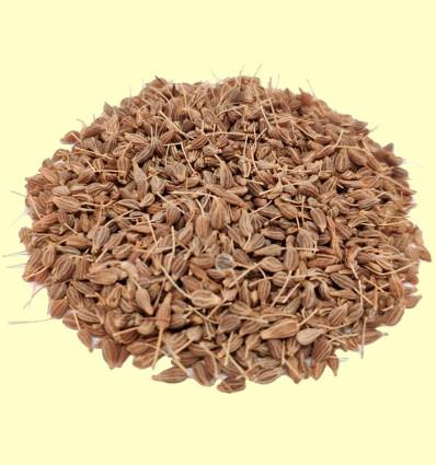 Anís verde semillas (Pimpinella anisum) - 100 g