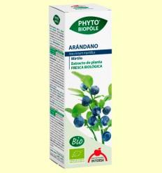 Phyto-Biopôle Arándano - Intersa - 50 ml