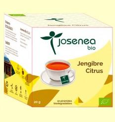Jengibre Citrus Bio - Josenea - 10 pirámides
