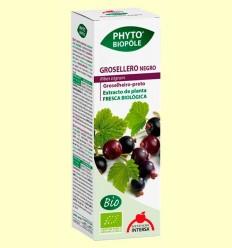 Phyto-Biopôle Grosellero Negro - Intersa - 50 ml