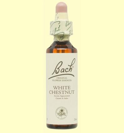 Castaño Blanco - White chestnut - Bach - 20 ml