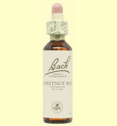 Brote de Castaño - Chestnut Bud - Bach - 20 ml