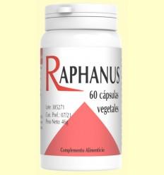 Raphanus - Raíz de Cochlearea - Codival - 60 cápsulas
