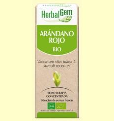 Arándano Rojo Bio - Yemoterapia - Herbal Gem - 15 ml