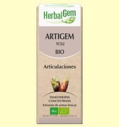 Artigem - Antiinflamatorio y antidolor - HerbalGem - 50 ml