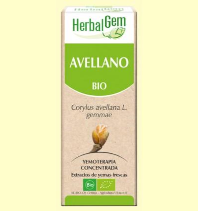 Avellano Bio - Yemoterapia - Herbal Gem - 15 ml