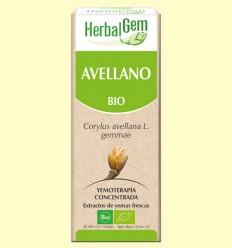 Avellano Bio - Yemoterapia - Herbal Gem - 50 ml