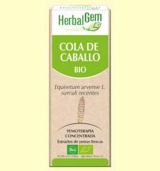Cola de Caballo Bio - Yemoterapia - Herbal Gem - 50 ml