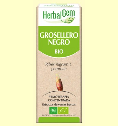Grosellero Negro Bio - Yemoterapia - Herbal Gem - 50 ml