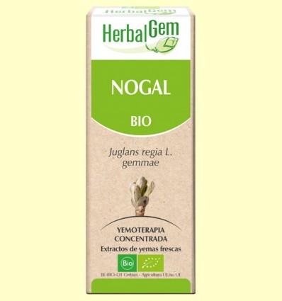 Nogal Bio - Yemoterapia - Herbal Gem - 15 ml