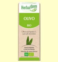 Olivo Bio - Yemoterapia - Herbal Gem - 50 ml
