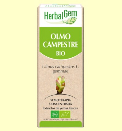 Olmo Campestre Bio - Yemoterapia - Herbal Gem - 50 ml