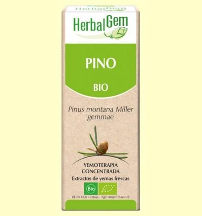 Pino Bio - Yemoterapia - Herbal Gem - 15 ml