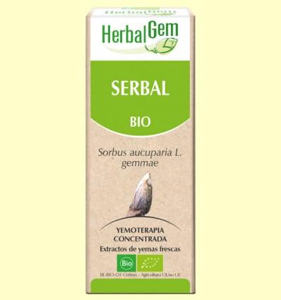 Serbal Bio - Yemoterapia - Herbal Gem - 50 ml