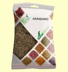 Arándano - Soria Natural - 30 gramos