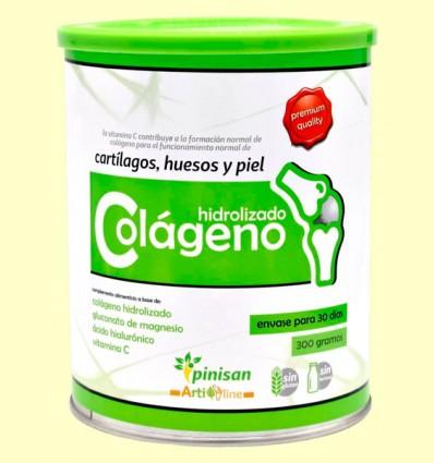 Colágeno hidrolizado - Pinisan - 300 gramos