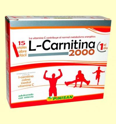 L Carnitina 2000 - Pinisan - 15 viales