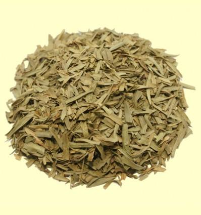 Estragón - 15 gramos