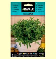 Ajedrea Común - Batlle - 5 gramos