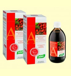 Arándano Rojo Concentrado - Santiveri - pack 2 x 490 ml